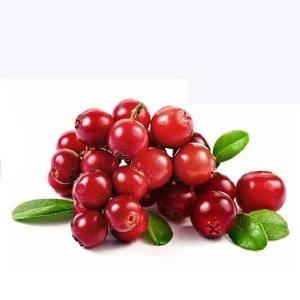 desidratado-–-seca-emagrece-infecção-urinária-cápsula-para-que-serve-benefícios-suco-fruta