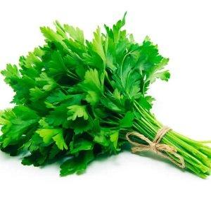 propriedades-como-usar-–-vaso-salsa-em-pó-selvagem-malefícios-tudo-sobre-o-–-em-grão-como-plantar-origem