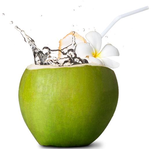 Coco-verde-beneficios-e-maleficios