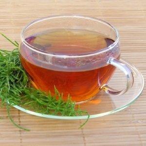 chá para infecção urinária